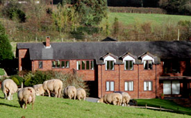 Lower Thorton Farmhouse Bed and Breakfast, near Exeter